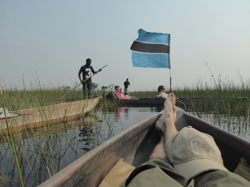 24th August – Maun/OkavangoDelta