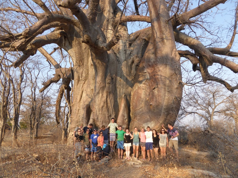 25th August – Okavango delta/Planet Baobab,Gweta