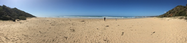 Beach panorama on the great ocean road