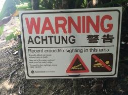 Recent crocodile sighting at the beach!